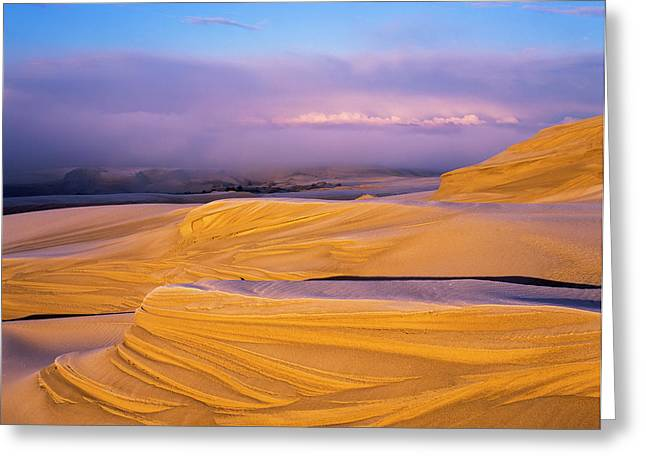 Frost On The Umpqua Dunes  Lakeside Greeting Card by Robert L. Potts