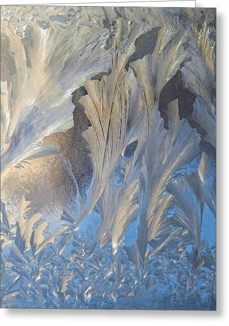 Frost On The Window Pane Greeting Card by Joy Nichols
