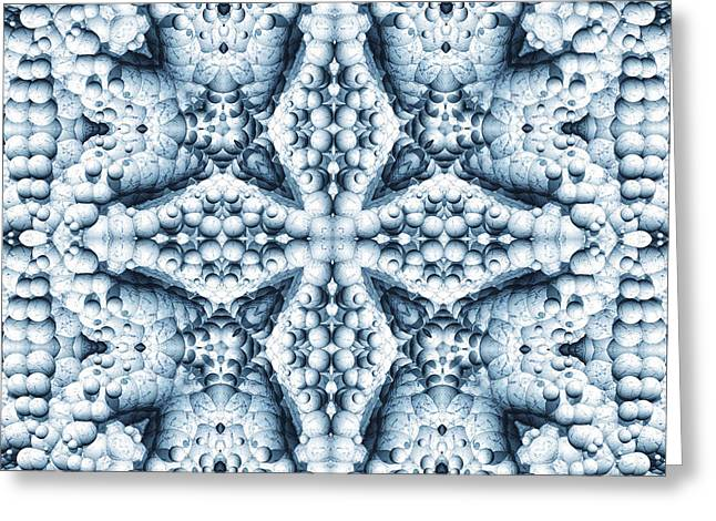 2d Greeting Cards - Frost Scope 01 Greeting Card by Roseann Caputo