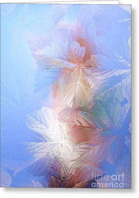 Frosted Glass Greeting Cards - Frosted Glass Greeting Card by Martyn F. Chillmaid