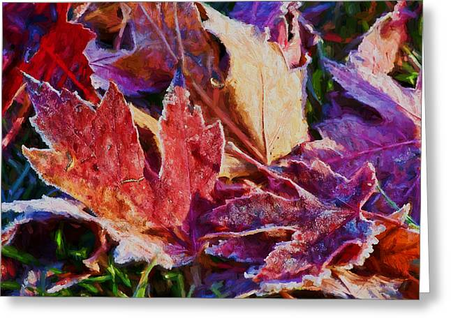 Fallen Leaf Greeting Cards - Frosted Leaves #2 - Painted Greeting Card by Nikolyn McDonald