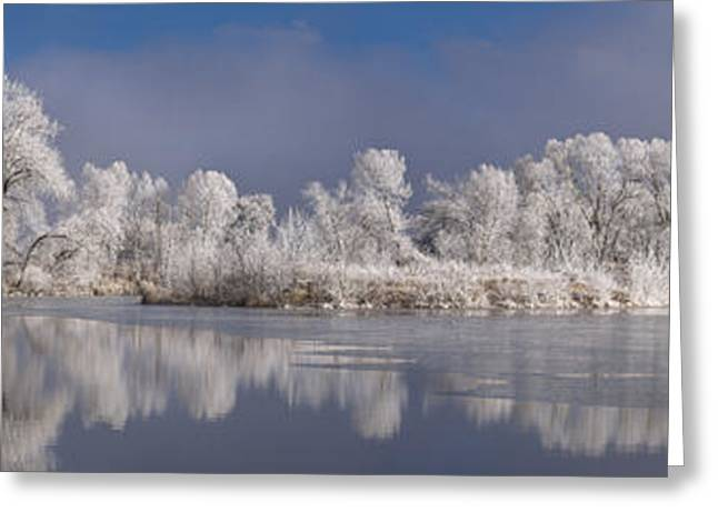 Fort Collins Greeting Cards - Frosted Greeting Card by Michael Van Beber