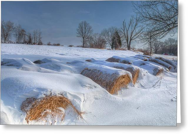 Snow-covered Landscape Greeting Cards - Frosted Wheat Greeting Card by Bill Wakeley