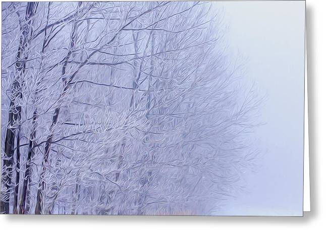 Foggy Photographs Greeting Cards - Frosty Forest Frontier - Artistic  Greeting Card by Chris Bordeleau