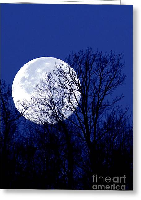 Cut-outs Digital Art Greeting Cards - Frosty Moon Greeting Card by Thomas R Fletcher