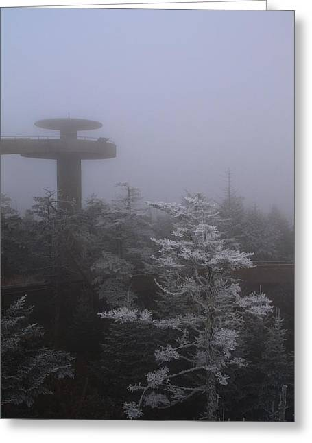 Misty Pine Photography Greeting Cards - Frosty Morning At Clingmans Dome Greeting Card by Dan Sproul