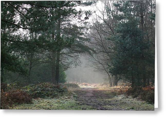Sledge Training Greeting Cards - Frosty Morning Greeting Card by Jean Walker
