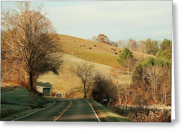 Frosty Mountain Morning Greeting Card by Amy Goode