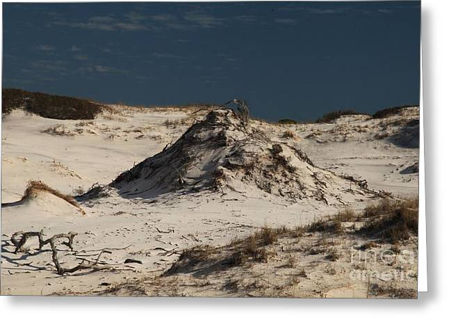 St Joseph Peninsula State Park Greeting Cards - Frosty White Dunes Greeting Card by Adam Jewell