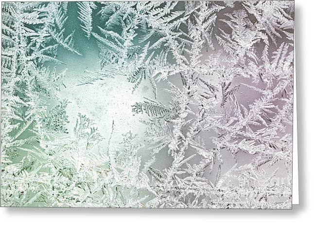 Glass Greeting Cards - Frosty Windowpane Greeting Card by Amy Cicconi