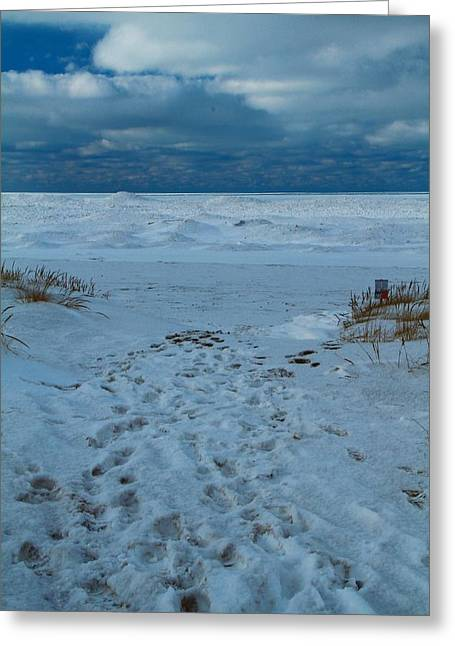 Saint Joseph Greeting Cards - Frozen Beach On Lake Michigan Greeting Card by Dan Sproul
