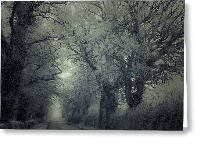 Winter Roads Greeting Cards - Frozen Greeting Card by Chris Fletcher