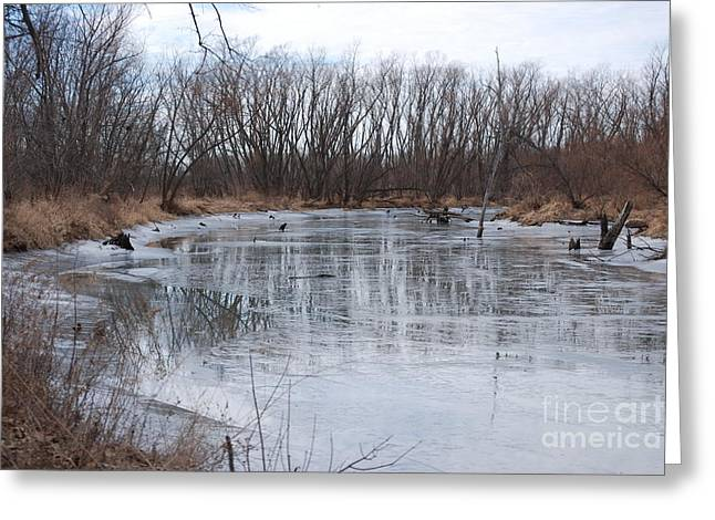 Frozen Creek Greeting Card by Mark McReynolds