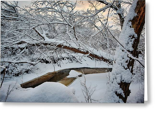 In Greeting Cards - Frozen Creek Greeting Card by Sebastian Musial