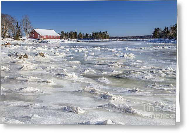 Maine Landscape Greeting Cards - Frozen Greeting Card by Evelina Kremsdorf