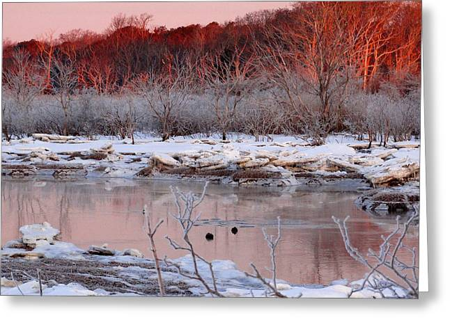 March Greeting Cards - Frozen Fire Greeting Card by Dianne Cowen