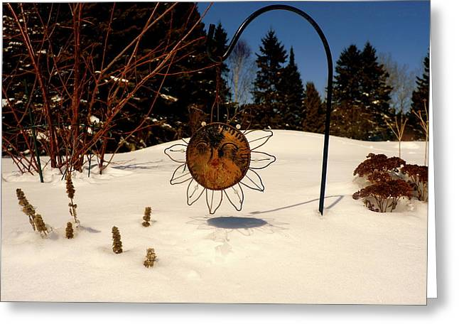 Frozen Garden Greeting Card by Danielle  Broussard