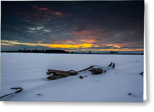 Sd Greeting Cards - Frozen Grass Lake  Greeting Card by Aaron J Groen
