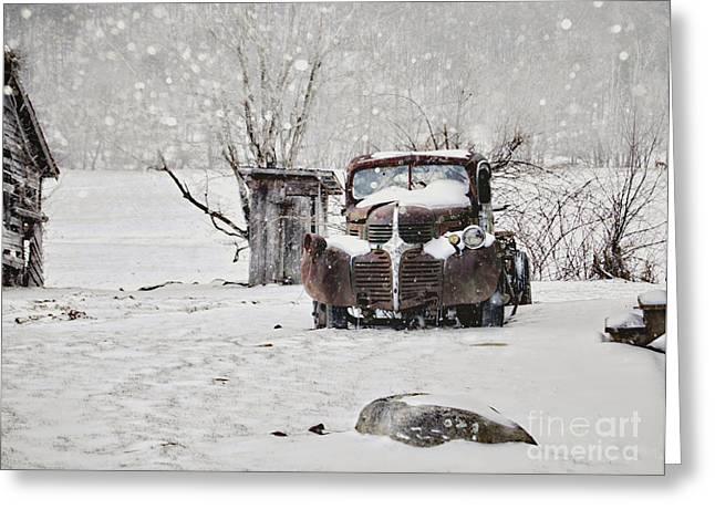 Flurries Greeting Cards - Frozen in Time Greeting Card by Benanne Stiens
