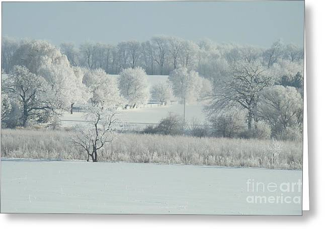 Snow-covered Landscape Greeting Cards - Frozen In Time II Greeting Card by Pam  Wiegert