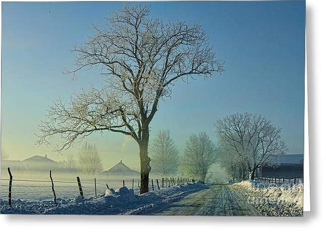 Rural Indiana Greeting Cards - Frozen in Time Indiana 2014 Greeting Card by David Arment
