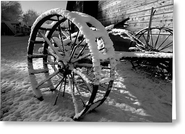 Frozen In Time Greeting Card by Steven Milner