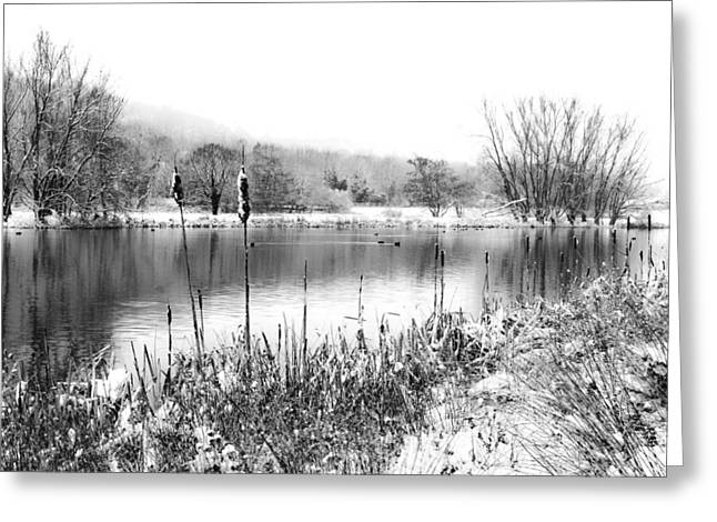 White And Black Landscapes Greeting Cards - Frozen lake Greeting Card by Ian Hufton