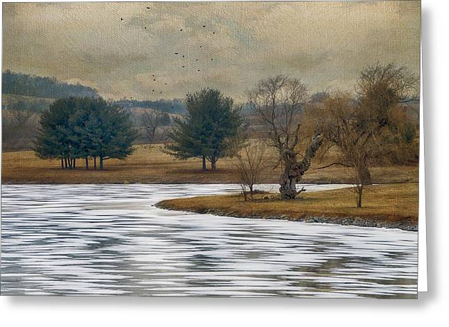Snow Tree Prints Greeting Cards - Frozen Lake Greeting Card by Kathy Jennings