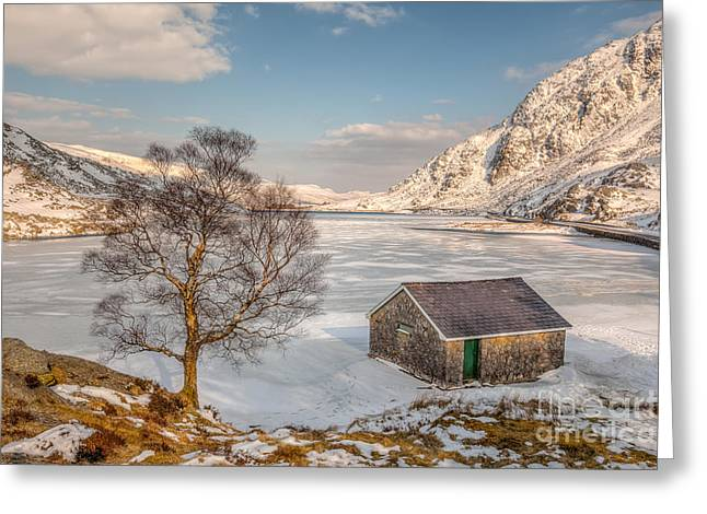 Fall Grass Greeting Cards - Frozen Lake Ogwen Greeting Card by Adrian Evans