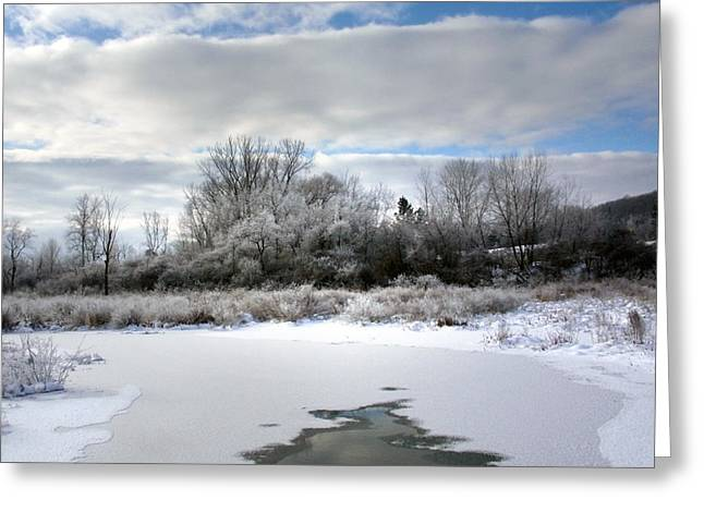 Rural Snow Scenes Greeting Cards - Frozen Landscape Greeting Card by Christina Rollo