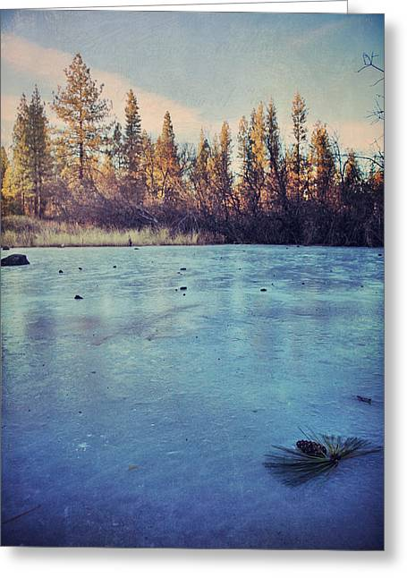 Winter Landscape Digital Greeting Cards - Frozen Greeting Card by Laurie Search