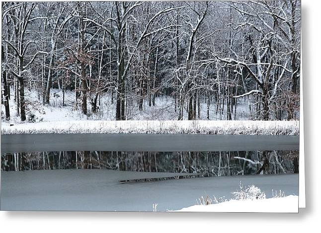 Snowy Day Digital Greeting Cards - Frozen Greeting Card by Linda Segerson