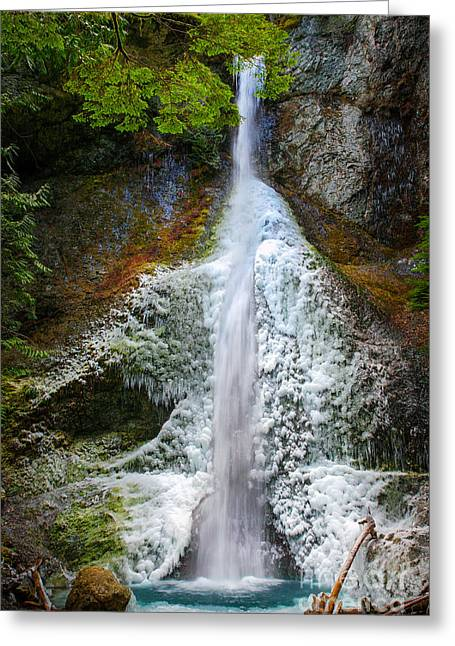 Olympic National Park Greeting Cards - Frozen Marymere Falls Greeting Card by Inge Johnsson