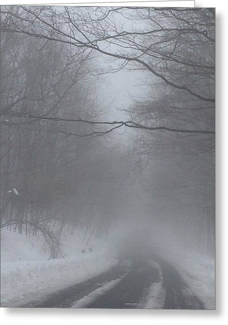 Snowstorm Greeting Cards - Frozen Pathway Greeting Card by Majula Warmoth
