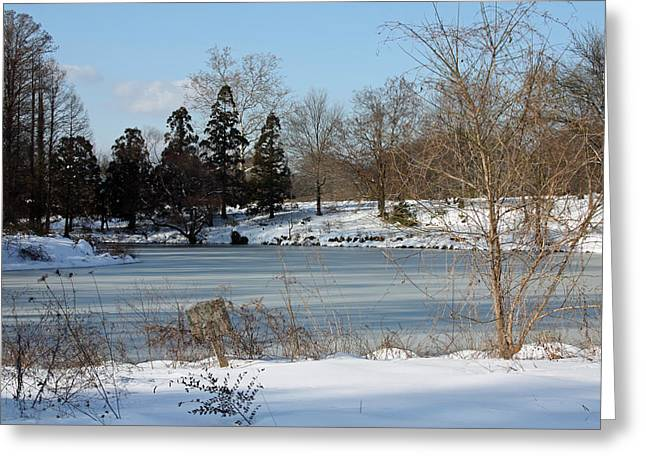 Snowmageddon Greeting Cards - Frozen Pond Greeting Card by Carolyn Stagger Cokley