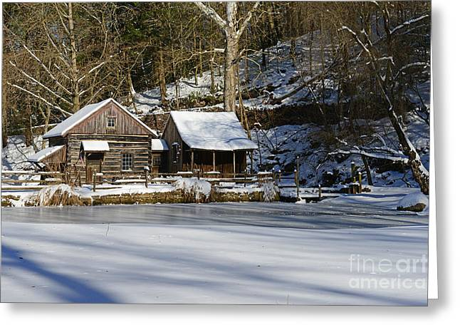 Snow Scene Landscape Greeting Cards - Frozen Pond  Greeting Card by Paul Ward