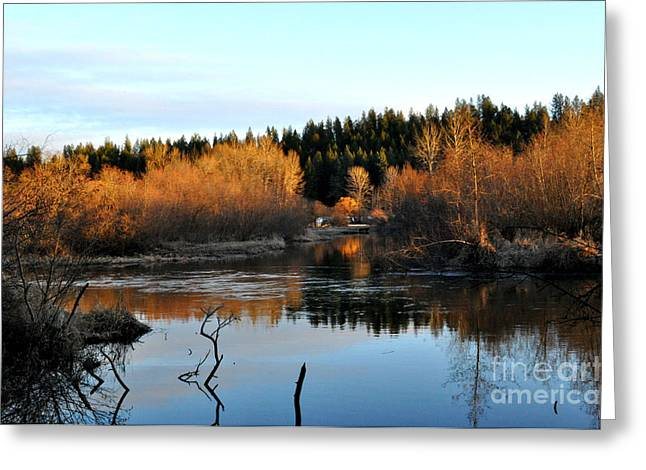 Spokane Greeting Cards - Frozen reflections Greeting Card by Ana Lusi