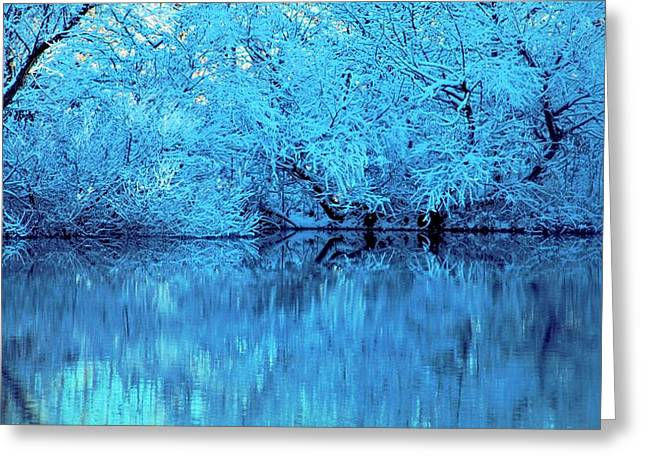 Reflection In Water Greeting Cards - Frozen Reflections In Ohio Greeting Card by Dan Sproul