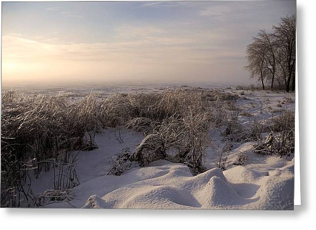 Foggy Day Greeting Cards - Frozen Riviere des Mille Iles Greeting Card by Juergen Weiss
