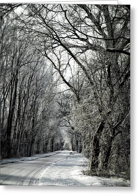 Hartsburg Greeting Cards - Frozen Road Greeting Card by Wayne Meyer