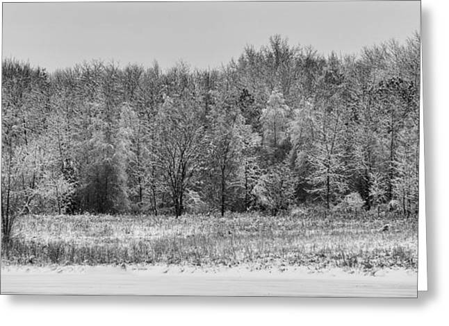 Winter Scene Photographs Greeting Cards - Frozen Greeting Card by Sebastian Musial