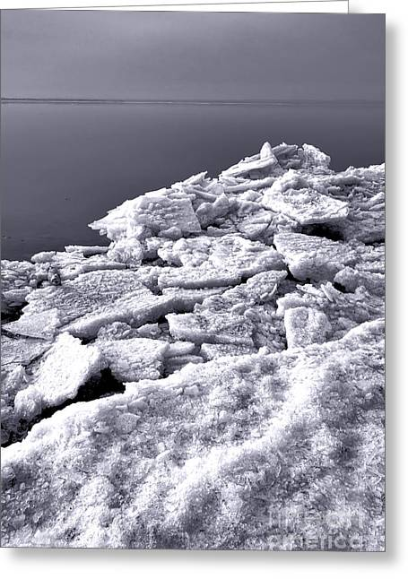 Chunk Greeting Cards - Frozen Shore Greeting Card by Olivier Le Queinec