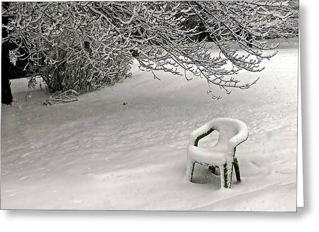 Lawn Chair Greeting Cards - Frozen Shroud Greeting Card by Catherine Melvin