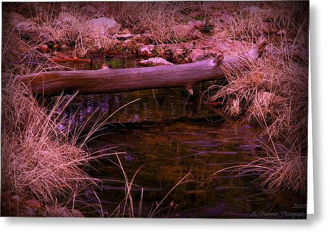 Prescott Greeting Cards - Frozen Stream Greeting Card by Aaron Burrows