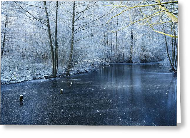 Snowy Stream Greeting Cards - Frozen Greeting Card by Svetlana Sewell