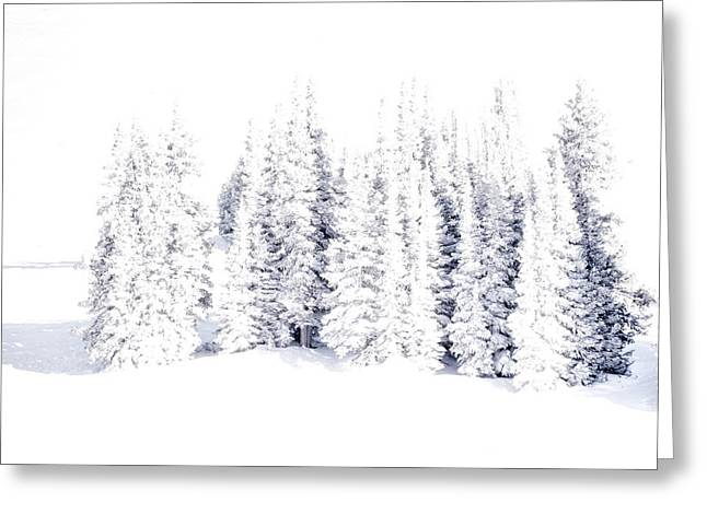 Snow-covered Landscape Greeting Cards - Frozen Greeting Card by The Forests Edge Photography - Diane Sandoval