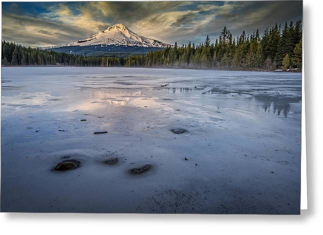 Mount Hood Oregon Greeting Cards - Frozen Trillium Greeting Card by Rick Berk