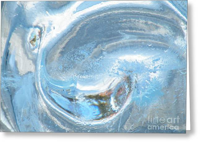 Ying Greeting Cards - Frozen Yang  Greeting Card by Brian Boyle