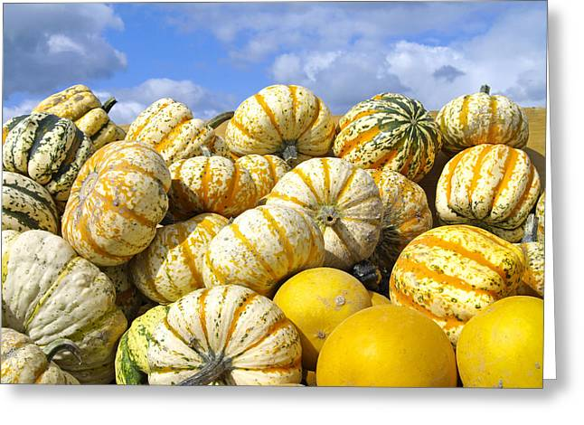 Frucht Greeting Cards - Frucht, Fruechte, Herbst, Kuerbis Greeting Card by Tips Images