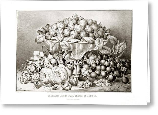 Strawberry Drawings Greeting Cards - Fruit and flower piece - 1863 Greeting Card by Pablo Romero